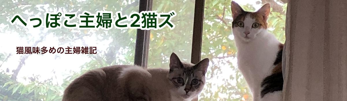 へっぽこ主婦と2猫ズ